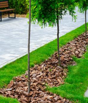 Pine-bark-landscaping